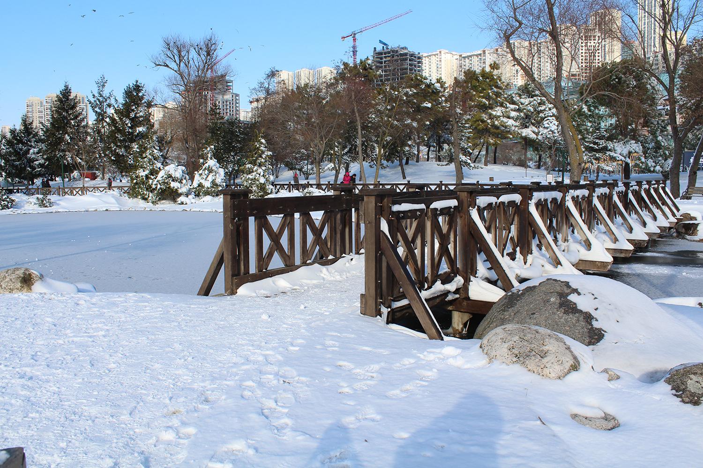 Bahçeşehir Gölet Kışın Bir Başka Güzel